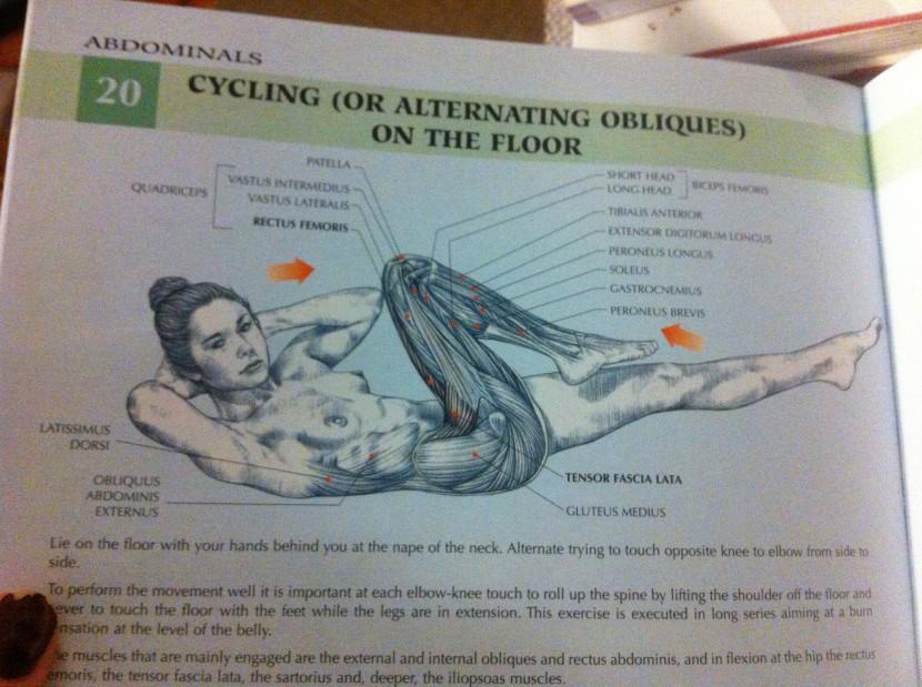 Women\'s Strength Training Anatomy – a review. | her name was cassandra